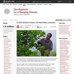 How to use the land to tackle climate change - Forum:Blog Forum:Blog