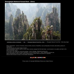 Landscapes, photos of landscapes, Zhangjiajie National Forest Park - China