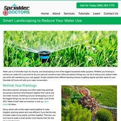 Smart Landscaping to Reduce Your Water Use - Sprinkler DoctorsSprinkler Doctors