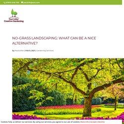 No-Grass Landscaping & Garden Maintenance: What Can Be a Nice Alternative?