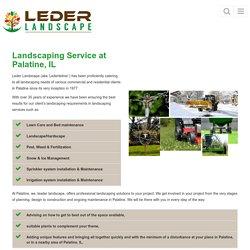 Landscaping Service Palatine, IL