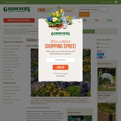 Edible Landscaping, Rosalind Creasy, Vegetable Gardening, Fruits: Gardener's Supply