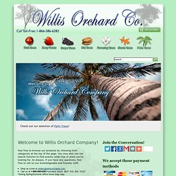 Willis Orchard Company: Fruit Trees | Flowering Trees | Berry Plants | Shade Trees | Walnut Trees