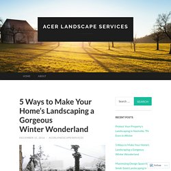 5 Ways to Make Your Home's Landscaping a Gorgeous Winter Wonderland