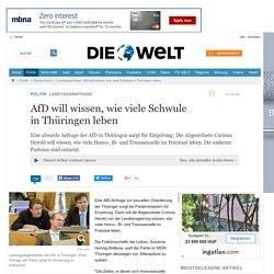 Landtagsanfrage: AfD will wissen, wie viele Schwule in Thüringen leben
