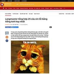 Langmaster tổng hợp 25 câu xin lỗi bằng tiếng Anh hay nhất
