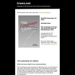 Language of the American Crow, Corvus brachyrhynchos.