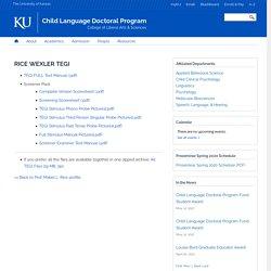 Child Language Doctoral Program
