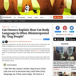 Cat Owners Explain How Cat Body Language Is Often Misinterpreted By 'Dog People'