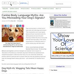 4 Dog Body Language Myths: Misreading a Pet's Signals