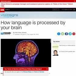Where language is processed inside your brain