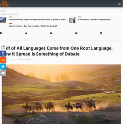 Half of All Languages Come from One Root Language. How it Spread Is Something of Debate