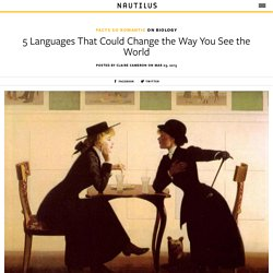 5 Languages That Could Change the Way You See the World
