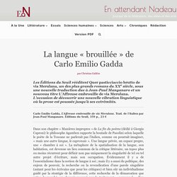 La langue « brouillée » de Carlo Emilio Gadda - En attendant Nadeau