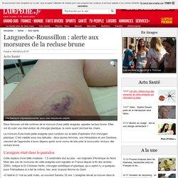 LA DEPECHE 10/07/15 Languedoc-Roussillon : alerte aux morsures de la recluse brune