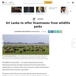 Sri Lanka to offer livestreams from wildlife parks