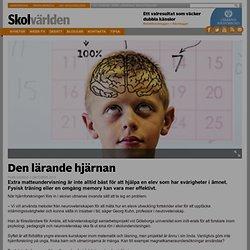 Den lärande hjärnan