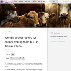 World's largest factory for animal cloning to be built in Tianjin, China