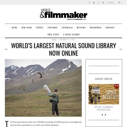 WORLD'S LARGEST NATURAL SOUND LIBRARY NOW ONLINE - Video