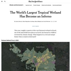 The World's Largest Tropical Wetland Has Become an Inferno