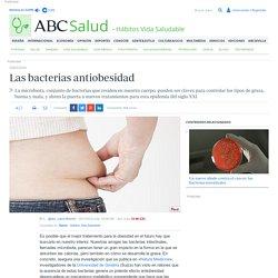 Las bacterias antiobesidad