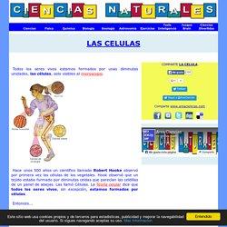 Las Celulas y Tipos de Celulas