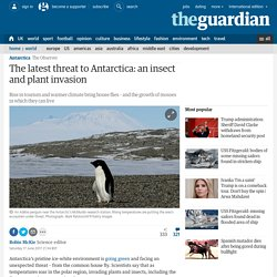 *****Biosecurity; Invasive species: The latest threat to Antarctica: an insect and plant invasion