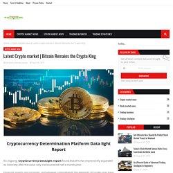 Bitcoin Remains the Crypto King
