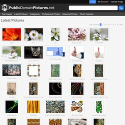 Latest Pictures Public Domain Pictures - Free Stock Photos Page 1