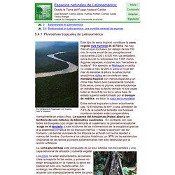 Pluviselvas tropicales de Latinoamérica