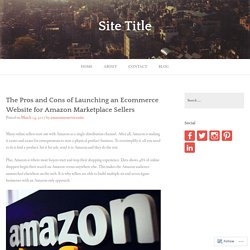 The Pros and Cons of Launching an Ecommerce Website for Amazon Marketplace Sellers – Site Title