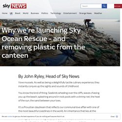 Why we're launching Sky Ocean Rescue - and removing plastic from the canteen