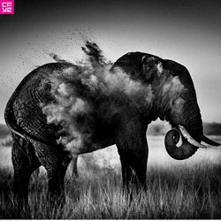 Laurent Baheux - Black and white Africa - CFYE Magazine