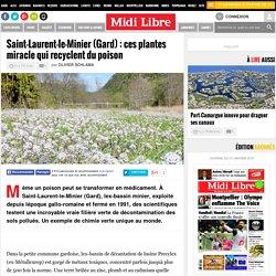 Saint-Laurent-le-Minier (Gard) : ces plantes miracle qui recyclent du poison