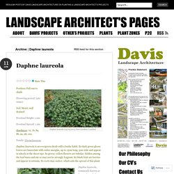 landscape architect's pages