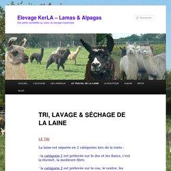 TRI, LAVAGE & SÉCHAGE DE LA LAINE