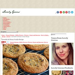 Lavender & Honey Cookie Recipe ~ Lovely Greens