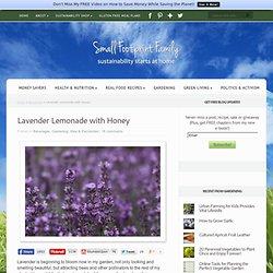 Lavender Lemonade with Honey