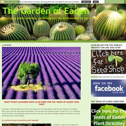 The Garden of Eaden