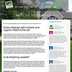 Lawn Care Maintenance Tips
