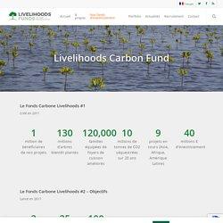 LCF- Les fonds Carbone Livelihoods – Livelihoods