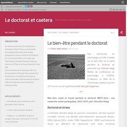 Le bien-être pendant le doctorat – Le doctorat et caetera