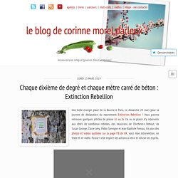 le blog de corinne morel darleux