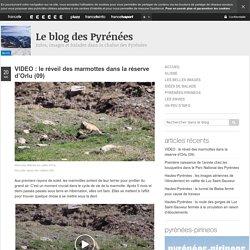 Le blog des Pyrénées - France 3 MP
