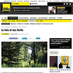 FRANCE INFO 13/01/16 TOUT COMPRENDRE - Le bois et nos forêts