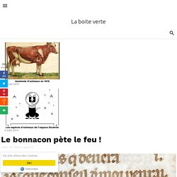 Le bonnacon pète le feu !