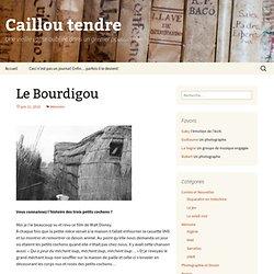 Le blog d'un caillou (tendre) » Le Bourdigou