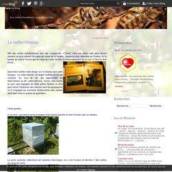 Le cadre-témoin - les abeilles de Lifou
