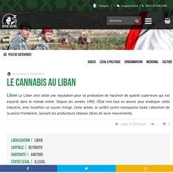 Le cannabis au Liban