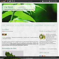 Le céleri - Or Vert